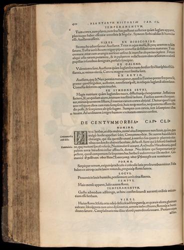 Image of Fuchs-1542-400