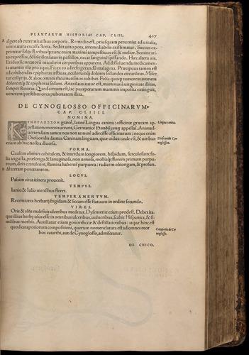Image of Fuchs-1542-407