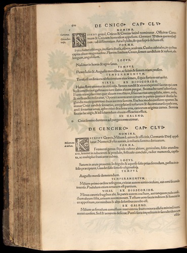 Image of Fuchs-1542-410
