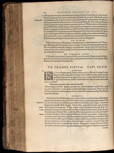 Image of Fuchs-1542-412