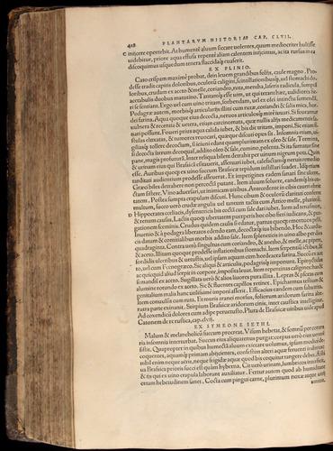Image of Fuchs-1542-418
