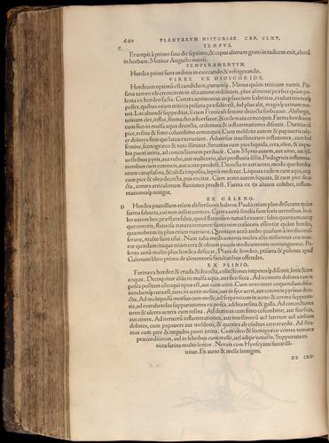 Image of Fuchs-1542-440