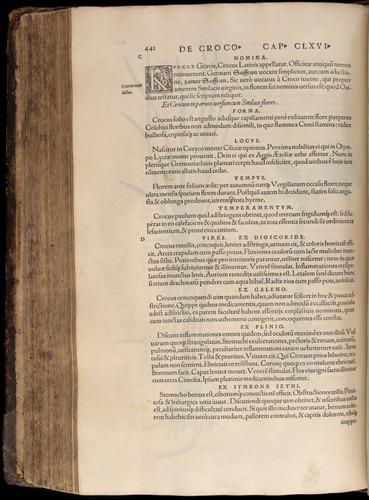 Image of Fuchs-1542-442