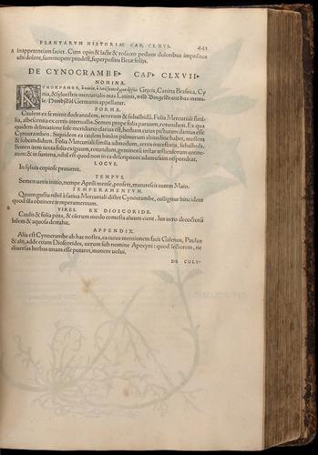 Image of Fuchs-1542-443