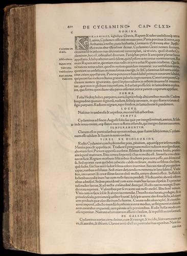 Image of Fuchs-1542-450