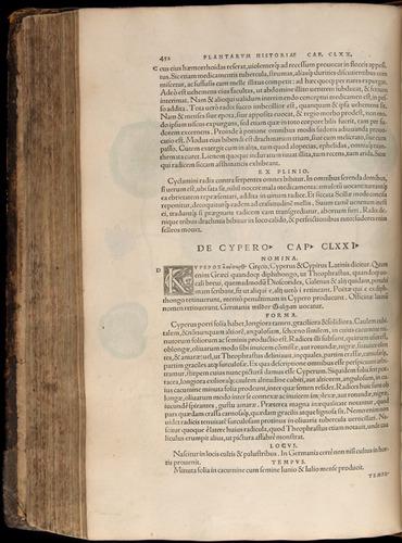 Image of Fuchs-1542-452