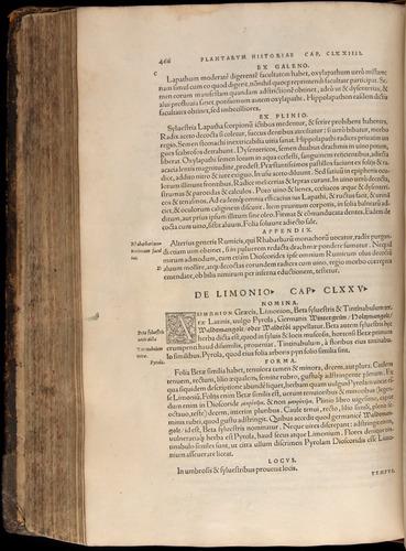 Image of Fuchs-1542-466