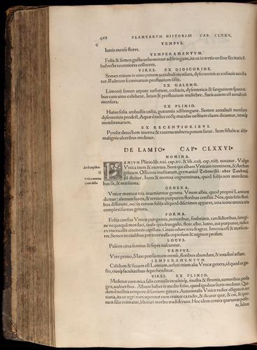 Image of Fuchs-1542-468