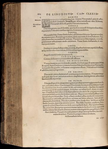 Image of Fuchs-1542-474