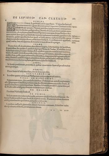 Image of Fuchs-1542-483