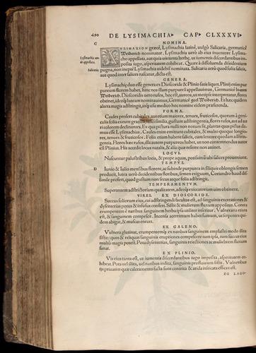 Image of Fuchs-1542-490