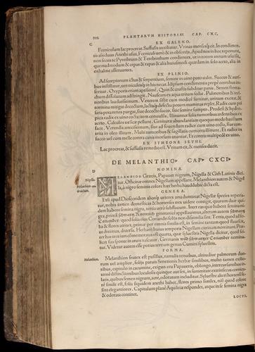 Image of Fuchs-1542-502