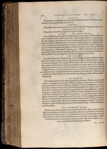 Image of Fuchs-1542-506