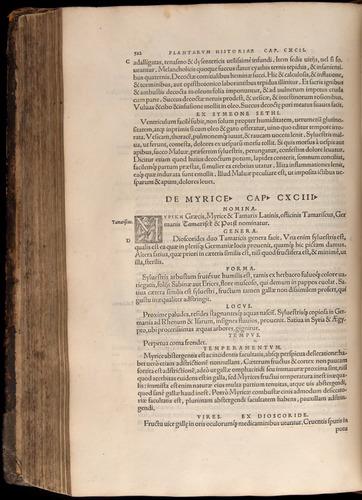Image of Fuchs-1542-512