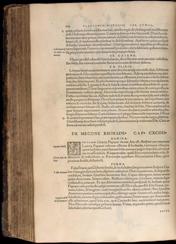 Image of Fuchs-1542-514