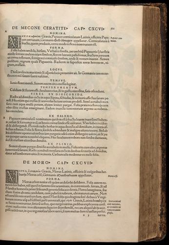 Image of Fuchs-1542-521