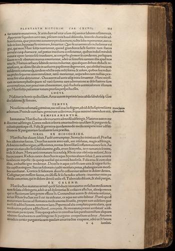 Image of Fuchs-1542-523