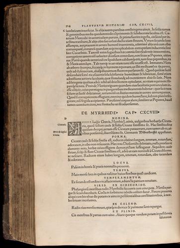 Image of Fuchs-1542-524