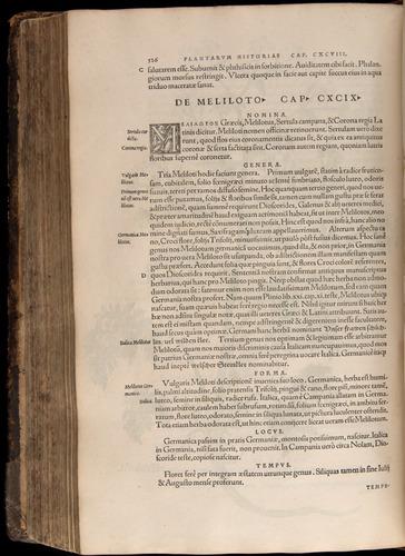 Image of Fuchs-1542-526