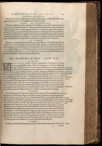 Image of Fuchs-1542-529