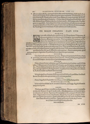Image of Fuchs-1542-532