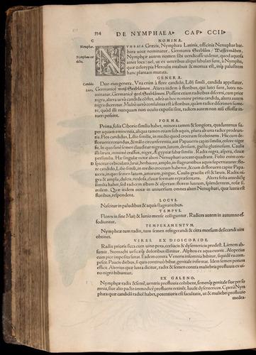 Image of Fuchs-1542-534