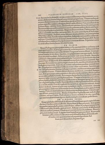 Image of Fuchs-1542-540