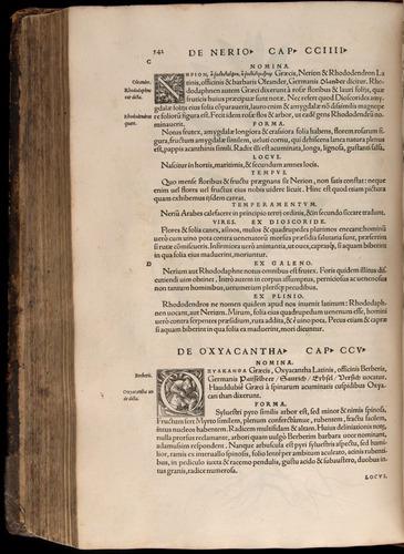 Image of Fuchs-1542-542