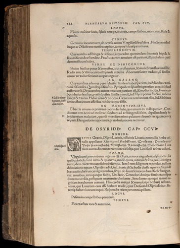 Image of Fuchs-1542-544
