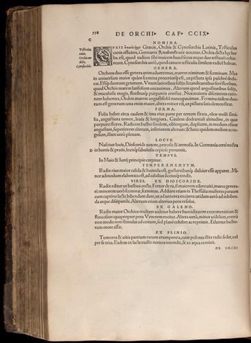 Image of Fuchs-1542-558