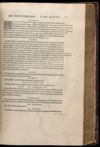 Image of Fuchs-1542-573