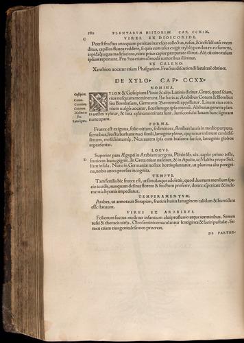 Image of Fuchs-1542-580