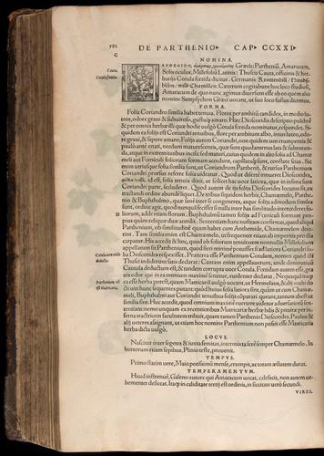 Image of Fuchs-1542-582