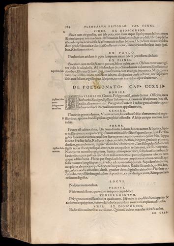 Image of Fuchs-1542-584