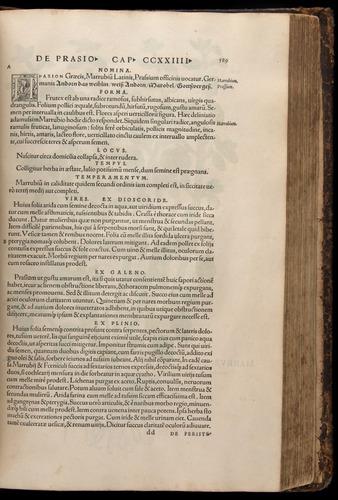 Image of Fuchs-1542-589
