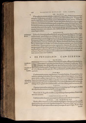 Image of Fuchs-1542-598