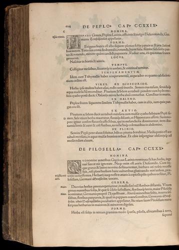 Image of Fuchs-1542-604