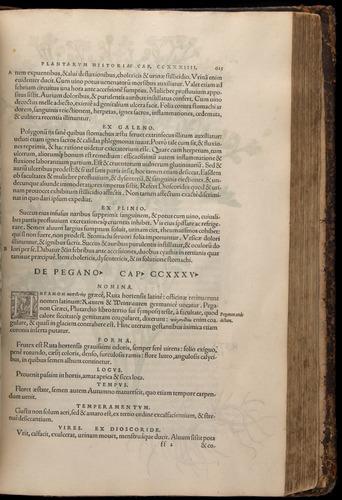 Image of Fuchs-1542-615