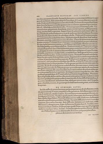 Image of Fuchs-1542-618
