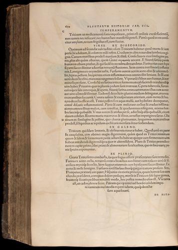 Image of Fuchs-1542-650