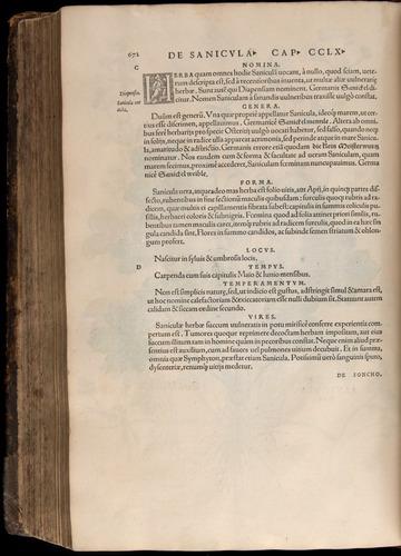 Image of Fuchs-1542-672