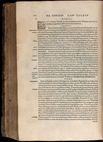 Image of Fuchs-1542-676