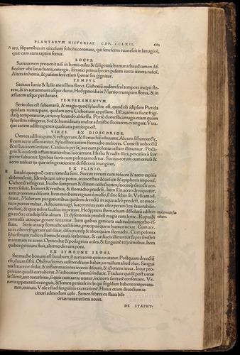 Image of Fuchs-1542-681