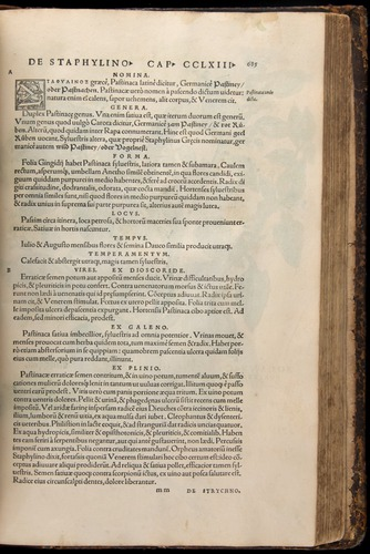 Image of Fuchs-1542-685