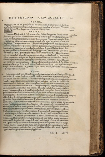 Image of Fuchs-1542-691
