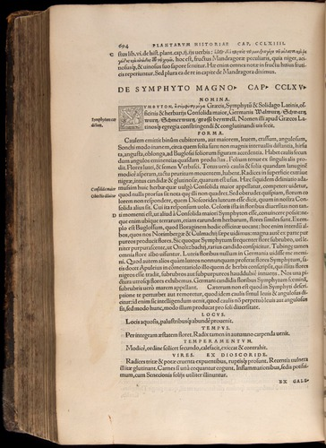 Image of Fuchs-1542-694