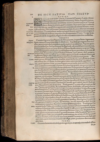 Image of Fuchs-1542-702