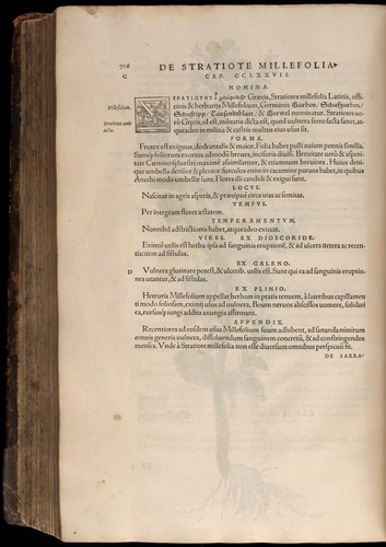 Image of Fuchs-1542-726