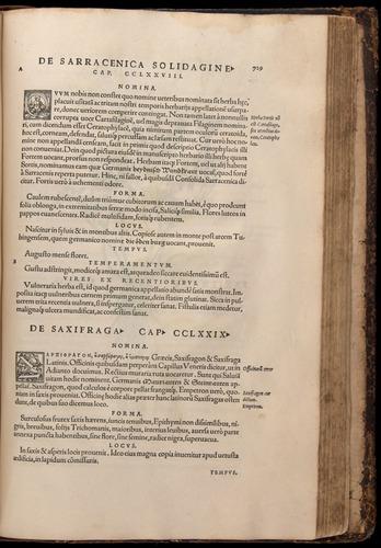 Image of Fuchs-1542-729