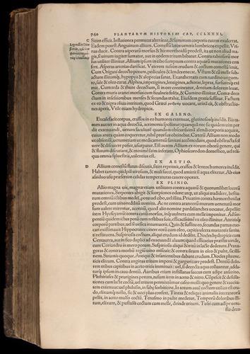 Image of Fuchs-1542-740